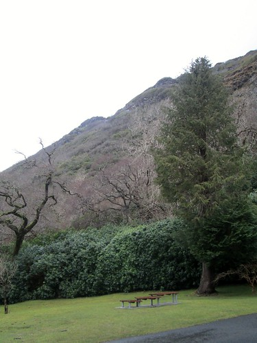 Kylemore Abbey Mountain View