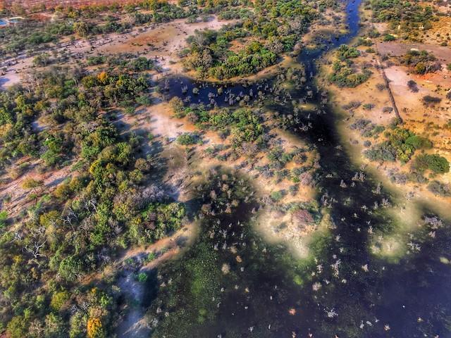 El Delta del Okavango a vista de avioneta (Botswana)