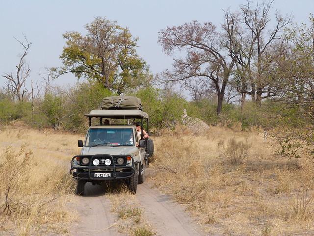 Todoterreno de Mopane Game Safaris en Moremi (Botswana)