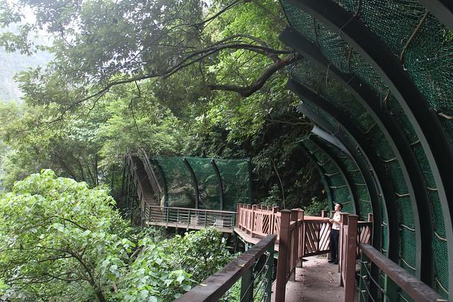 11月2日將正式開放的小錐麓步道,圍網擋住樹林,是保護生態系還是誰?(圖片來源:太魯閣國家公園臉書粉絲頁)