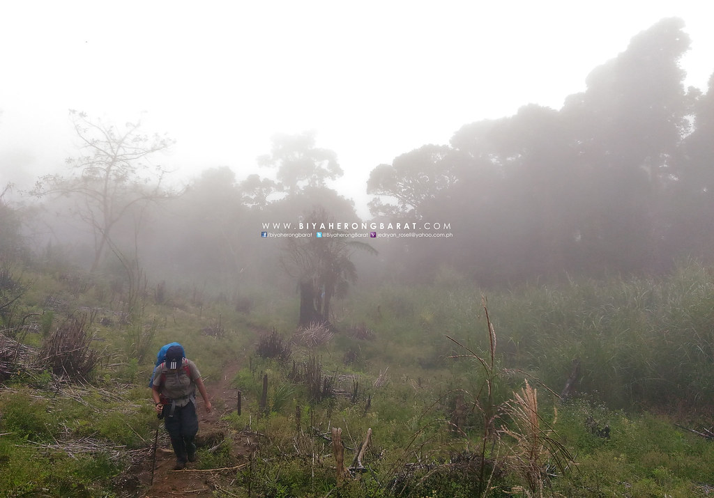 Mount Apo Digos City Davao del sur asus zenfone 2 laser camera phone