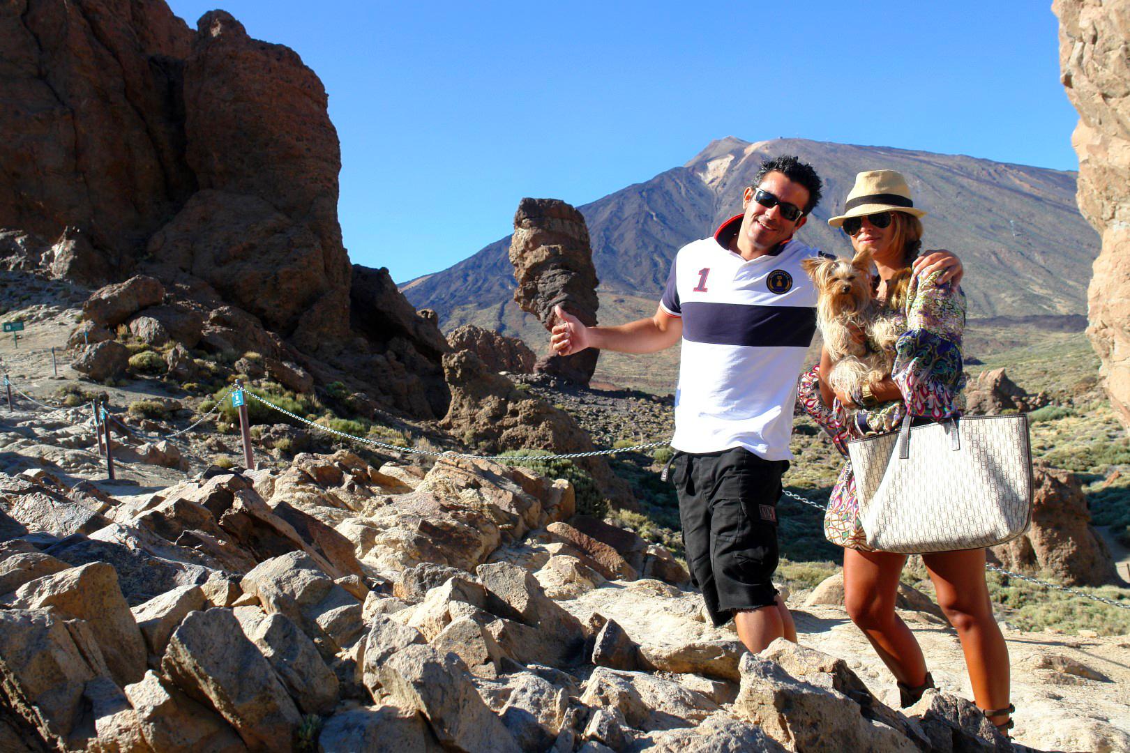 Viajar con Mascota mascotas - 30852510841 5a723bc969 o - Cómo viajar con perros y mascotas