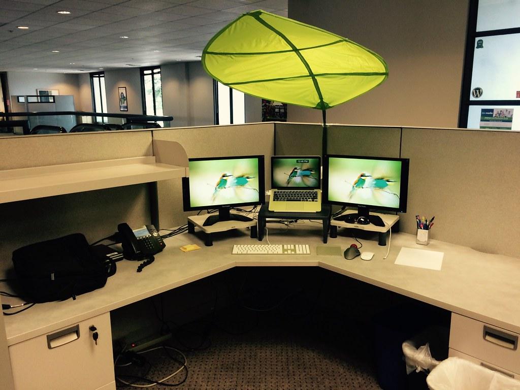My Office Desk With IKEA Leaf Shade Daniel M Hendricks