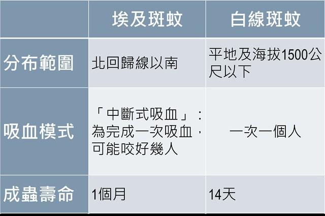 埃及斑蚊與白線斑蚊比較表。資料提供:蔡坤憲。製表:廖靜蕙。