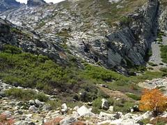 Dans la descente du vallon de Lomentu au-dessus de la source de Trighjone
