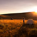 Bighorn Camp Portrait