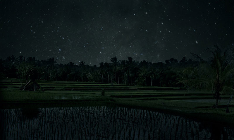 8-ubud-night-via-clockwise-pictures.biz