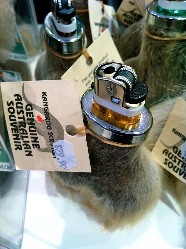 Kangaroo scrotum lighter