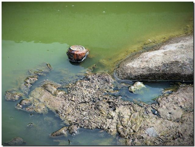 西班牙巴塞隆納市畢索斯河(River Besos)曾經是歐洲最髒的河流之一。圖片來源:SantiMB.Photos(CC BY-NC-ND 2.0)