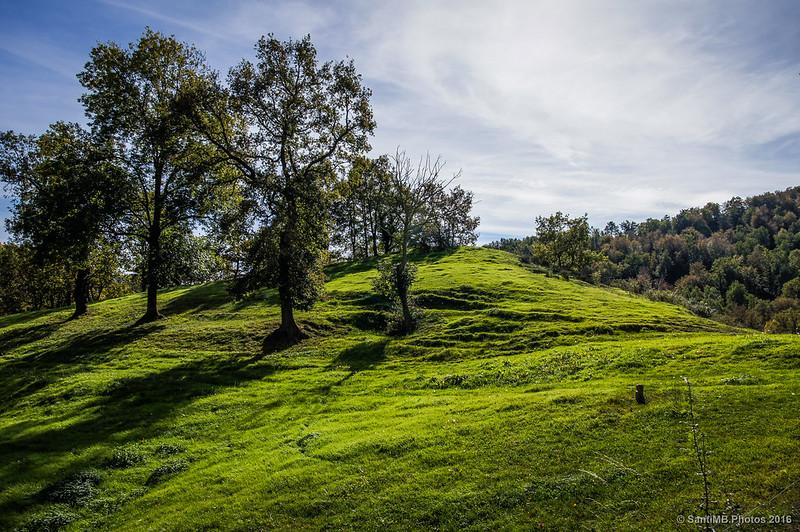 Verdes prados en otoño