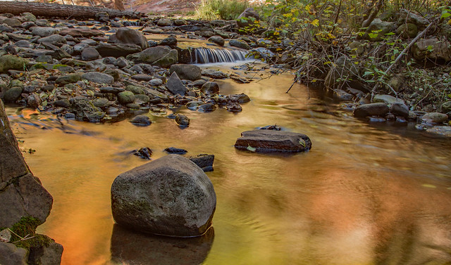 West Fork of Oak Creek: Arizona