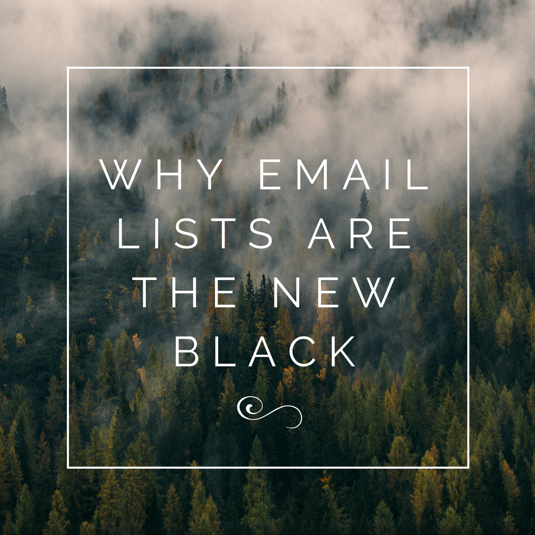 Why Email Lists Are The New Black | Cashew Kitchen