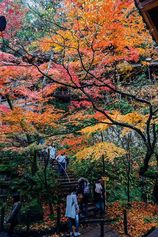 Kyoto_Eikando_16