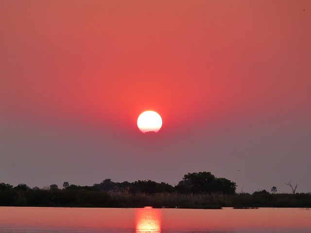 Atardecer en el Delta del Okavango (Botswana)