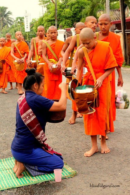 Monks Alms Giving Luang Prabang Laos