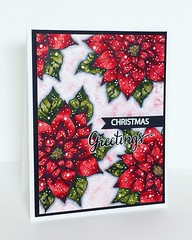 Christmas Greetings Poinsettias by bdengler4 (Barb Summers Engler)
