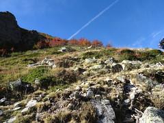 Traversée du vallon sans nom à l'W de la crête de Timozzu : la petite montée à la sortie sur la crête