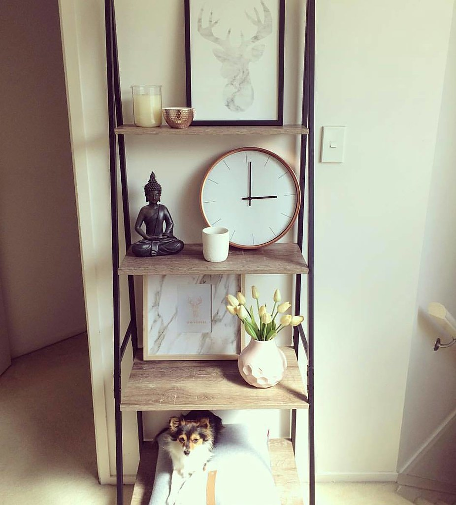 Love These Kmart Industrial Ladder Shelves And Its Also D