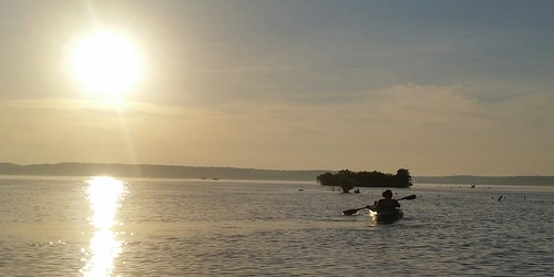 Photo of kayaker at Mallows Bay