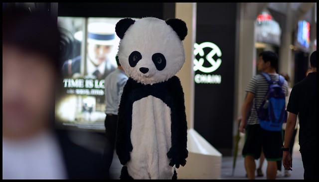 panda hong kong