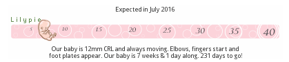 lilypie baby pregnancy ticker growth week 7 seven weeks evolution
