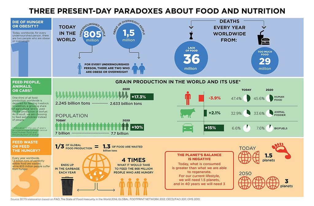 米蘭議定書提出的三大矛盾:同時有人死於飢餓與過胖、糧食餵養牲畜和生質能的比例增加以及大量的食物浪費(圖片來源:Fondazione Barilla Center for Food & Nutrition)