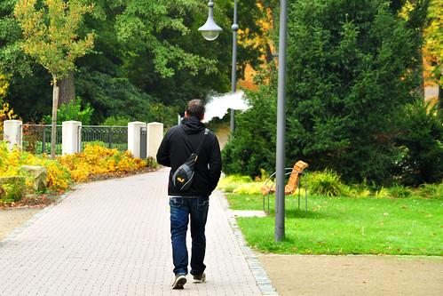 Bad Dürkheim Rheinland-Pfalz Kurstadt Kurpark Sehenswürdigkeit Botanik Herbst Herbstfarben Laubverfärbung bunt farbenfroh Foto Brigitte Stolle Oktober 2015