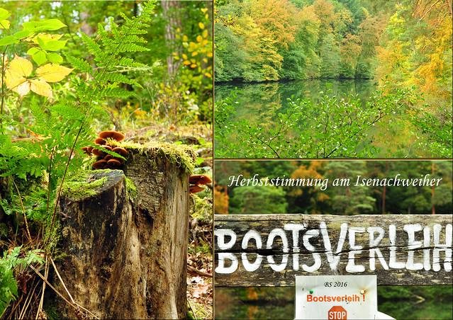 """Naturerlebnis Pfälzer Wald. Unter anderen umrunden wir den Isenachweiher. Die Isenach, ein Nebenflüsschen des Rheins, wurde hier gestaut. Ein Stausee wird in der Region """"Woog"""" genannt. Die Restauration am Isenachweiher ist montags und dienstags geschlossen. Macht nichts, denn wir sind ja in erster Linie zum Spazierengehen hierhergekommen. Wir wollen Pilze fotografieren und Maronen für ein Maronensüppchen sammeln. Ein schöner Oktobertag mit viel Natur, vielen Eindrücken und Bewegung an der frischen Luft. Und später gab's dann noch Schwarzwälder Kirschtorte in einem Forsthaus mitten im Wald ... Fotos und Collagen: Brigitte Stolle 2016"""