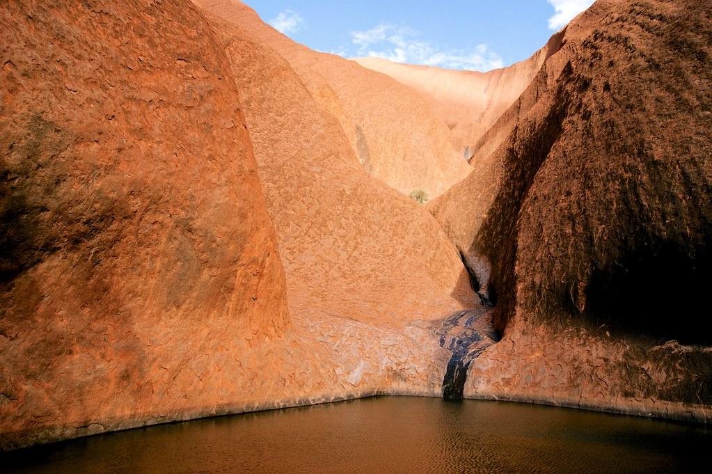 Uluru water hole