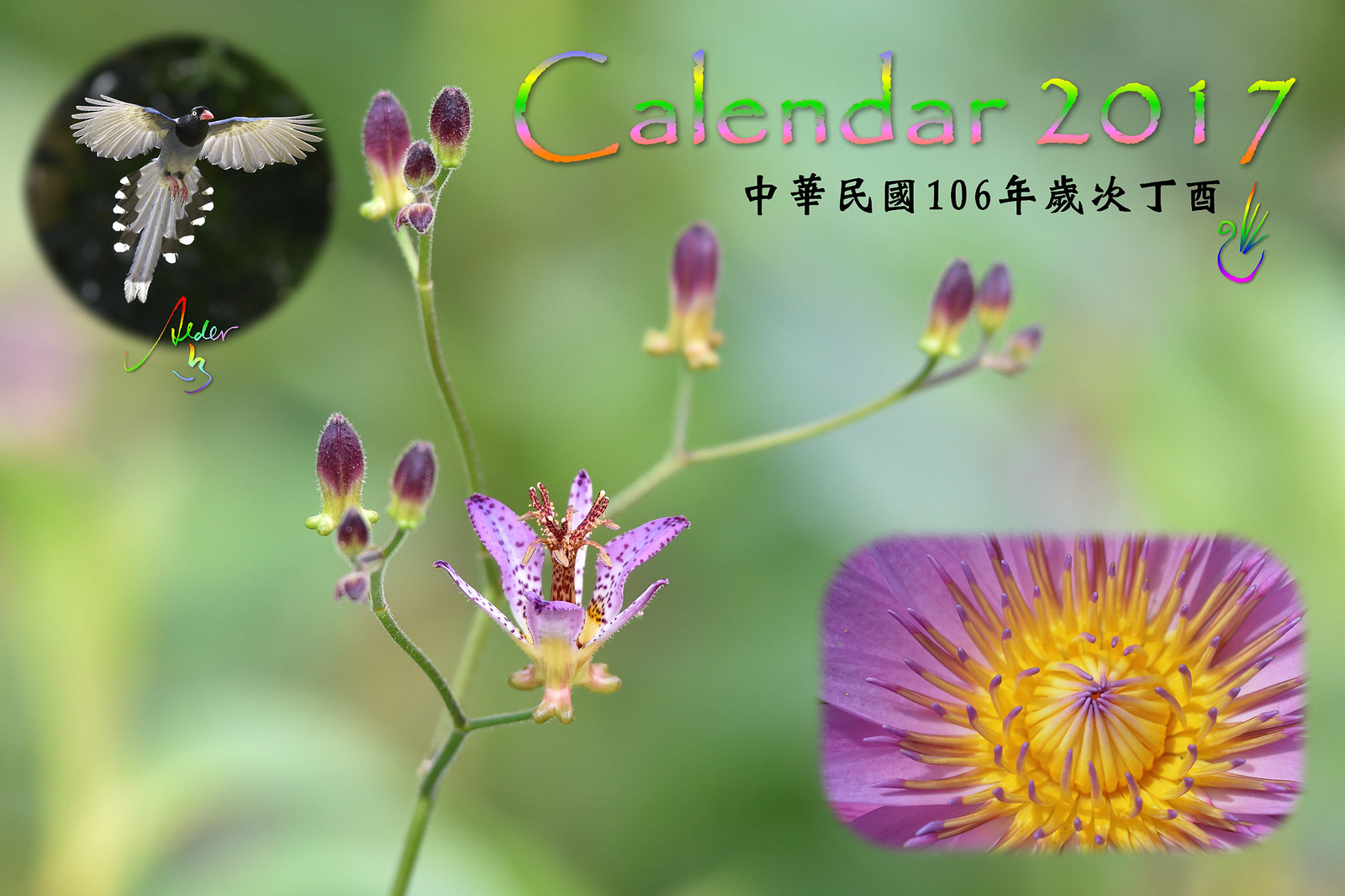 Calendar_03alder_00