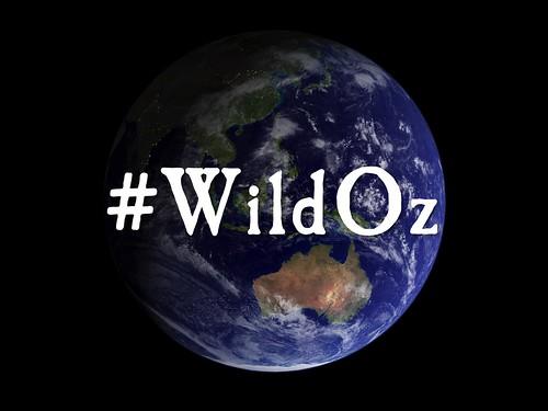 #wildoz