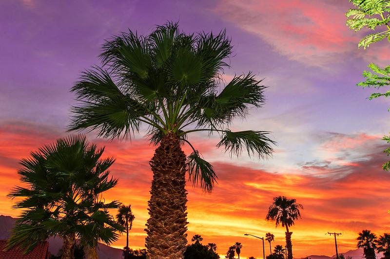 palm springs sunset #perkfresh