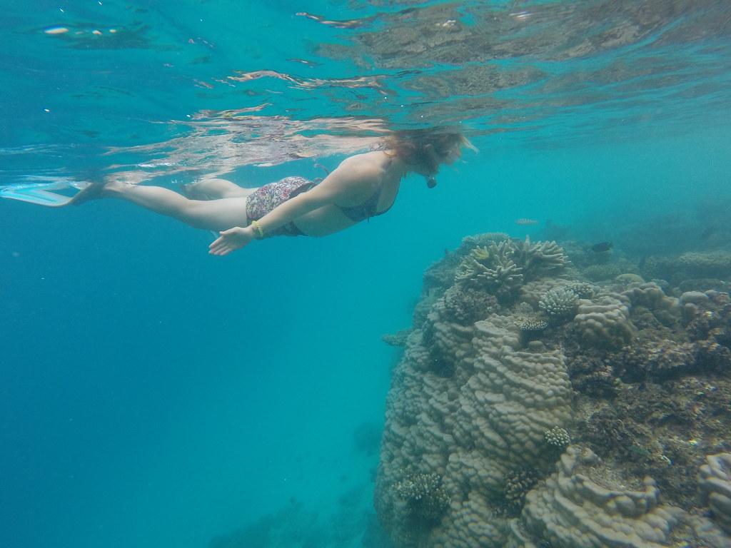 Malediivit snorklaus