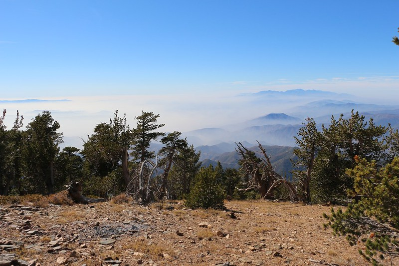 The view west from Washington Monument on San Bernardino Peak