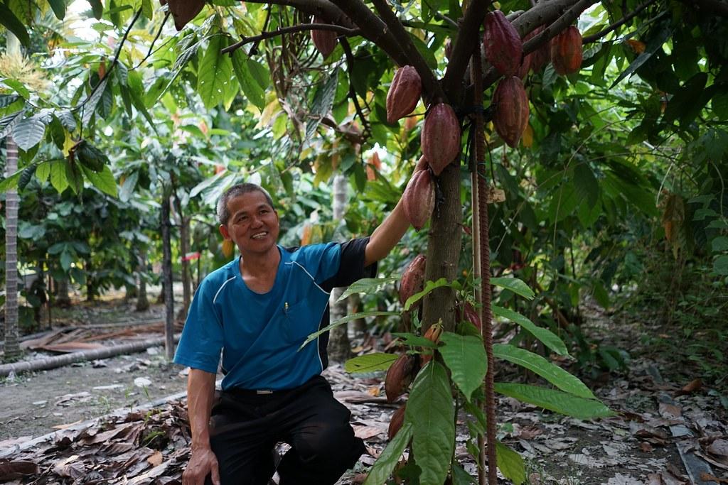 蔡大哥與他的可可莊園。黃瑋隆攝。圖片來源:地球公民通訊