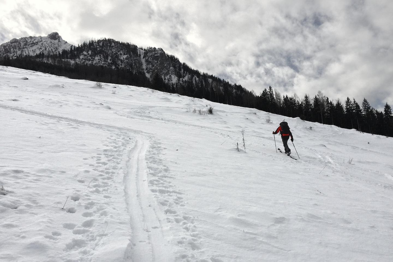 Laimeralm stoupá pod severní srázy hory Rettenkogel