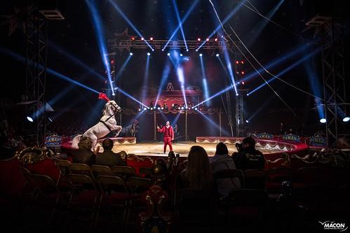 Cirque en fête 2016