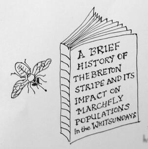 a short history book