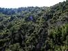 La crête de Bocca Fuatella vu depuis le contournement du Meriu en RG