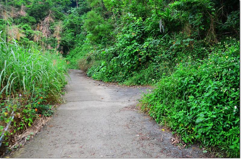 溪樂格朗山岔路