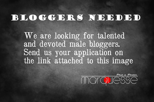 Bloggers needed