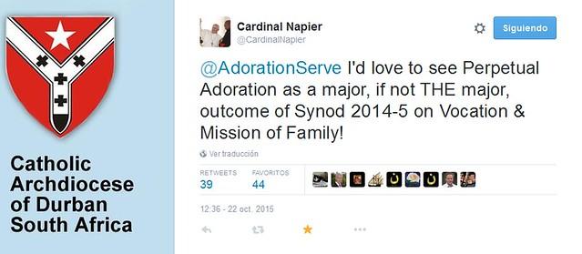 Cardenal Napier