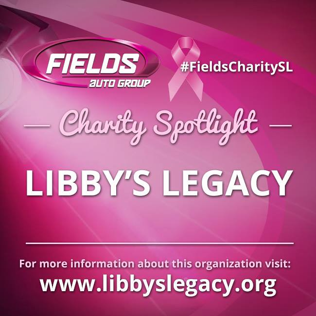 Breast cancer foundation named libbys legacy