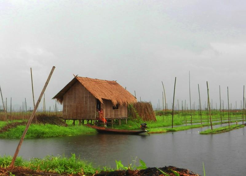 Дождь на озере Инле