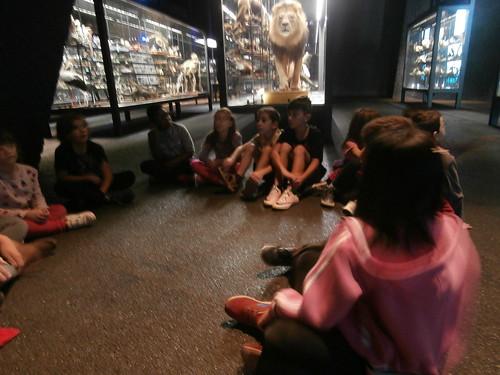 Museu Blau 3r