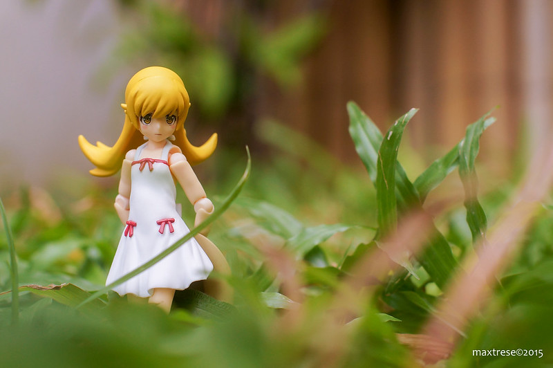 Figma Shinobu of Monogatari anime series