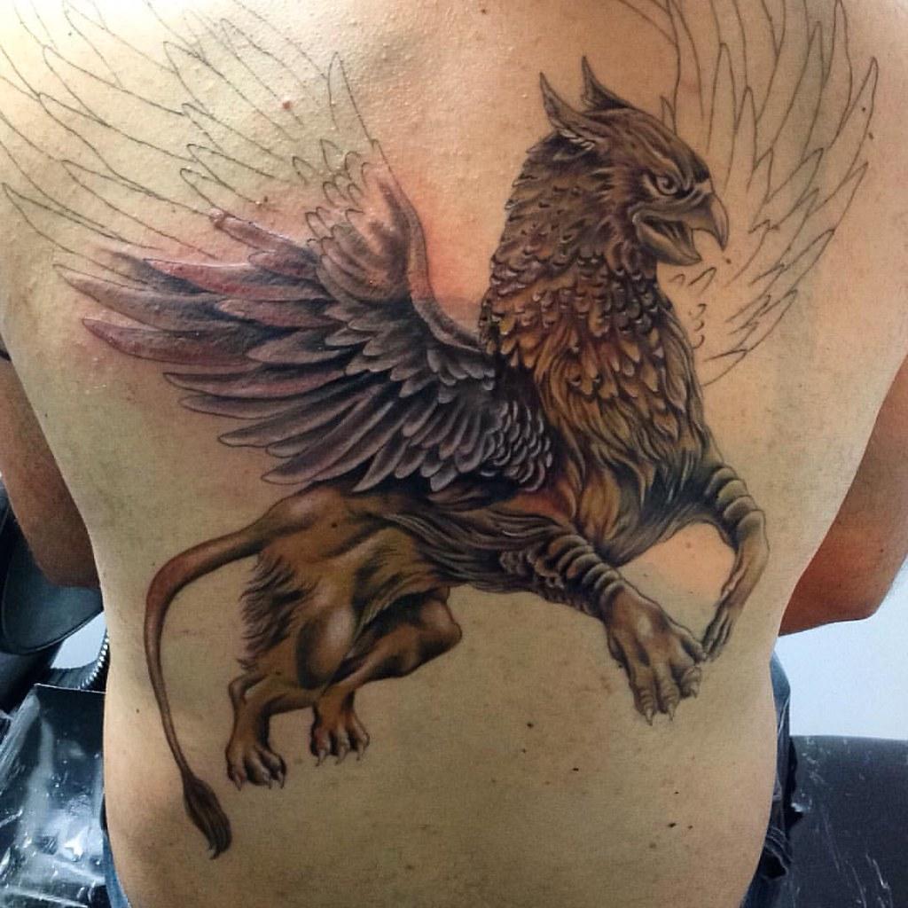 Em progresso grifo grif tattoo tattoos tatuaje tatto for Fotos de grifos