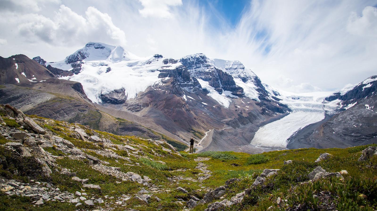 wilcox pass day hike jasper