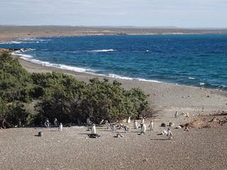 Reserva Natural de Punta Tombo, Argentina