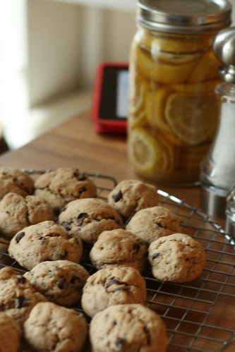 Meatball cookies on a cooling rack in the foreground. A mason jar full of lemon slices midway, and an out-of-focus iPad in the backgroud.
